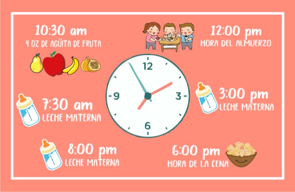Papillas para bebés de 6 meses - horario de alimentación