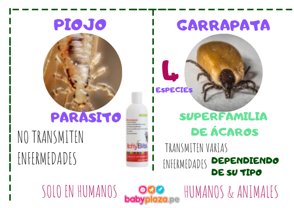 parasitos y garrapatas
