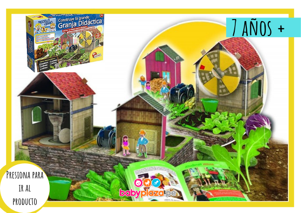 juguetes educativos para bebés carotina
