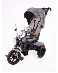 Triciclo Reclinable Giratorio Roadster Gris